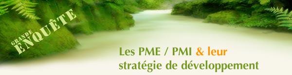 La stratégie de développement des PME PMI